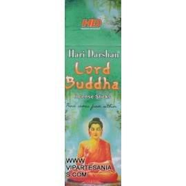 Lord Buddha Hari Darshan