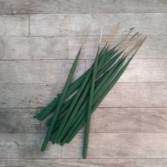 Tridev velvet series agarwood